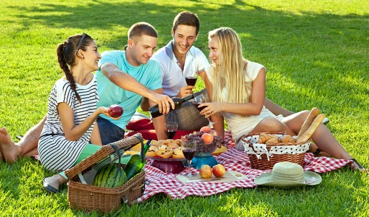 Cupid's Pulse Article: Date Idea: Picnic with Pals