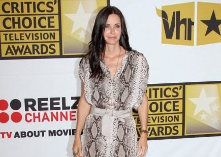 Cupid's Pulse Article: Courteney Cox Steps Out with a Mystery Man