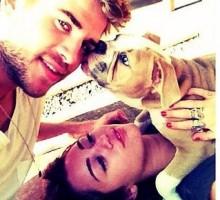 Miley Cyrus and Liam Hemsworth Get Cuddly With Dog Ziggy