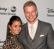 Find Out Details About 'The Bachelor' Winner Catherine Giudici's Celebrity Wedding Gown!