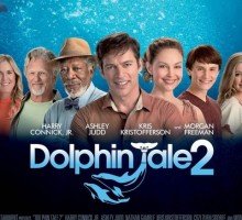 Dolphin Tale 2: Believe in the Power of Relationships