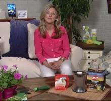 Celebrity Video Interview: Love Advice From HGTV Host Kelly Edwards