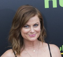 Celebrity Break-Up: Amy Poehler and Nick Kroll Call It Quits