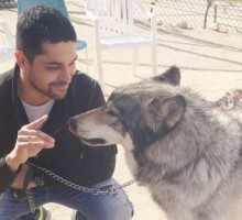 Celebrity News: Demi Lovato Takes Birthday Boy Wilmer Valderrama to Wolf Sanctuar