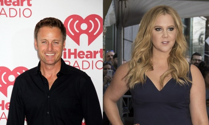 Cupid's Pulse Article: Celebrity News: Amy Schumer Slams 'Bachelor' Host Chris Harrison for Calling Jubilee 'Complicated'