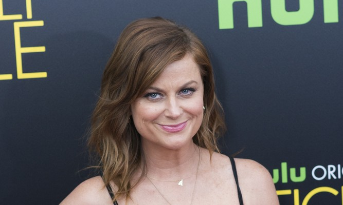 Cupid's Pulse Article: New Celebrity Couple: Amy Poehler Is Dating Lawyer Benjamin Graf