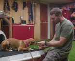 Celebrity News: A Brand New Episode of 'Lucky Dog' with Host Brandon McMillan Will Warm Your Heart