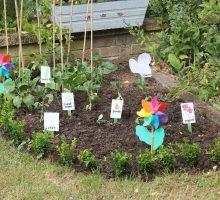 Parenting Trend: Start A Garden With Your Children