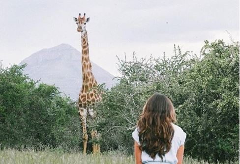 Cupid's Pulse Article: Romantic Getaway: Destinations in South Africa