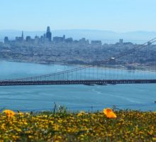 Travel Tips: Must-Taste Group Food Crawl Stops in San Francisco
