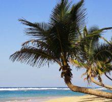 "Travel Tips: 4 Destination Wedding Ideas That Make Saying ""I Do"" Beyond Memorable"